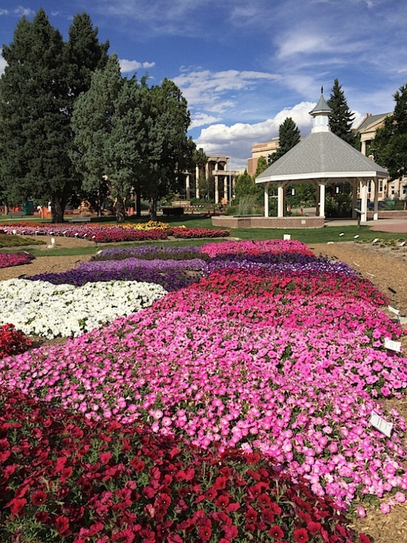 CSU trial gardens, Fort Collins, Colorado