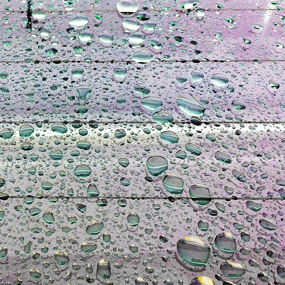 raindrops_0991