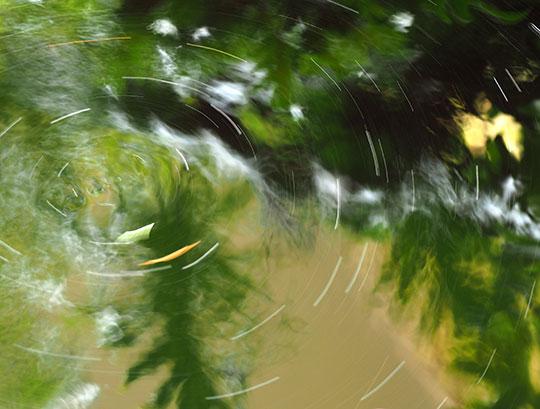 pond-eddy-p2060143
