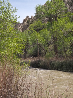 Sevier-River-P5090008