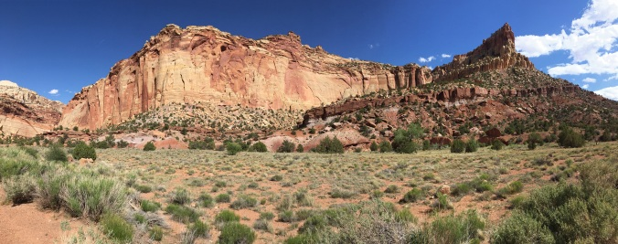 near-Capitol-Gorge-IMG_1914