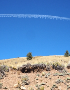 Contrail, just west of Kenosha Pass