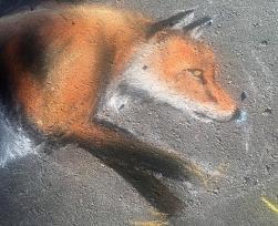 Detail: Fox