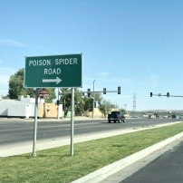 Poison Spider Road, Casper, Wyoming. I wonder if there's a lurid story behind this sign.