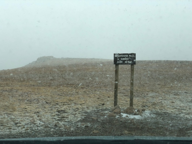 Snow at Beartooth Pass